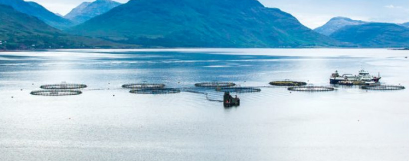 NEW AQUACULTURE LEGISLATION