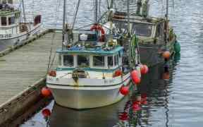 CANADA INVESTS IN FISHING HARBOUR
