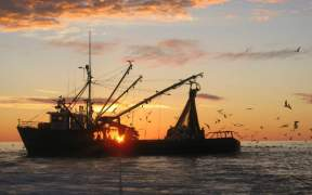 USA LAUNCHES NEW STRATEGIC FISHERIES