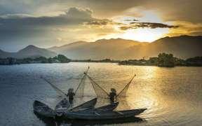 VIETNAMESE FISH CATCHES UP