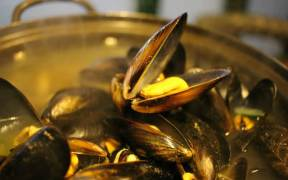EATING MUSSELS THREE TIMES