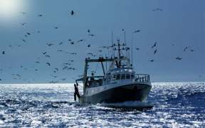 SCOTTISH FISHERMEN TRIAL MOBILE APP