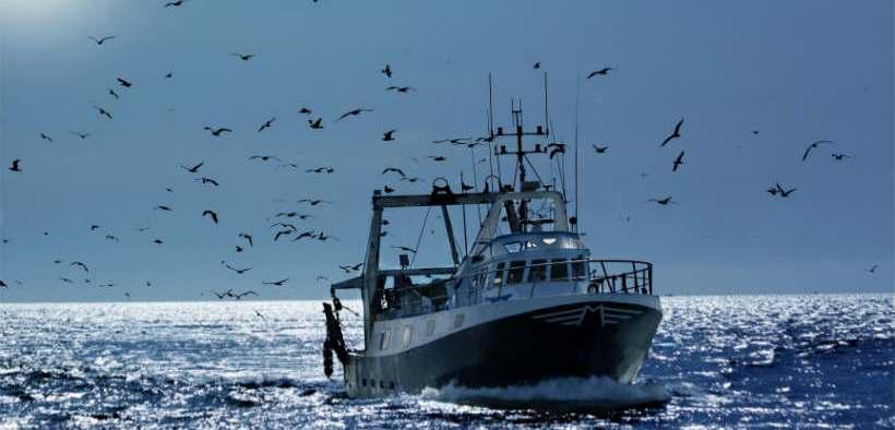 SCOTTISH FISHERMEN TRIAL MOBILE APP