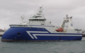 Good cod fishing for Icelandic vessel2