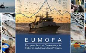 PORTUGUESE TOP EU SEAFOOD EATING