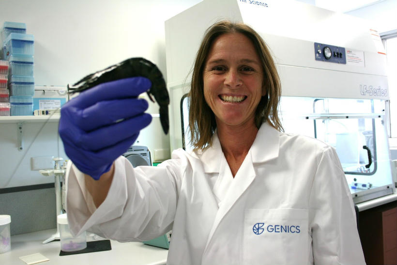 SCIENCE DELIVERS MORE AUSSIE