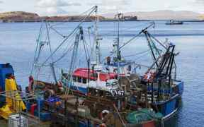 SHETLAND FISHERMEN SLAM COD QUOTA