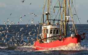 SUSTAINABLE FISHERIES ENSHRINED