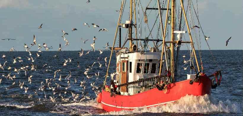 SUSTAINABLE FISHERIES ENSHRINED
