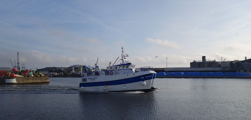 EC adopts temporary aid framework to support fisheries