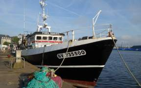EU FISHING SECTOR OUTLINES