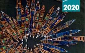 un-fao-releases-2020-edition