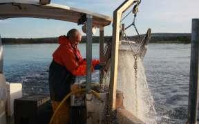 dorset-fishermen-buoyed-by-waitrose-support