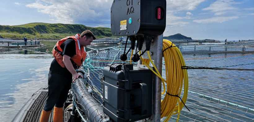 scottish-salmon-farmers-to-review-the-use-of-acoustic-devices