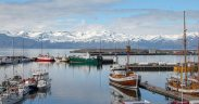 131,000 TONNES OF FISH CAUGHT BY ICELAND IN AUGUST