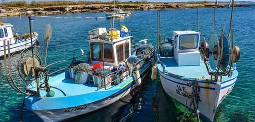 CYPRIOT SEAFOOD SECTOR