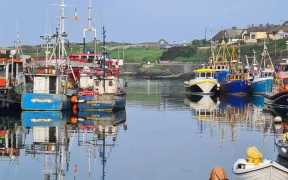 MINISTER URGES IRISH FISHERIES