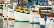 European Fisheries Control Agency