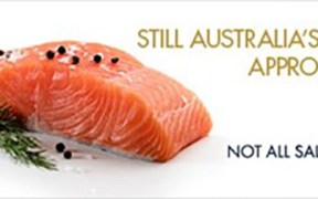 RSPCA-approved Huon Salmon hits Coles shelves
