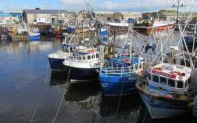 UK FISHING FLEET RECORDED