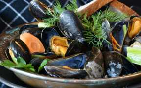 canada-invests-in-mussel-research