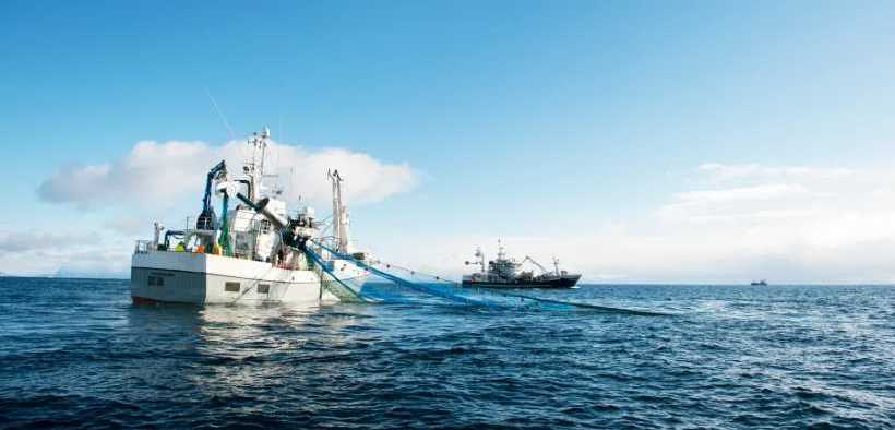 STABLE NORWEGIAN SEAFOOD EXPORTS
