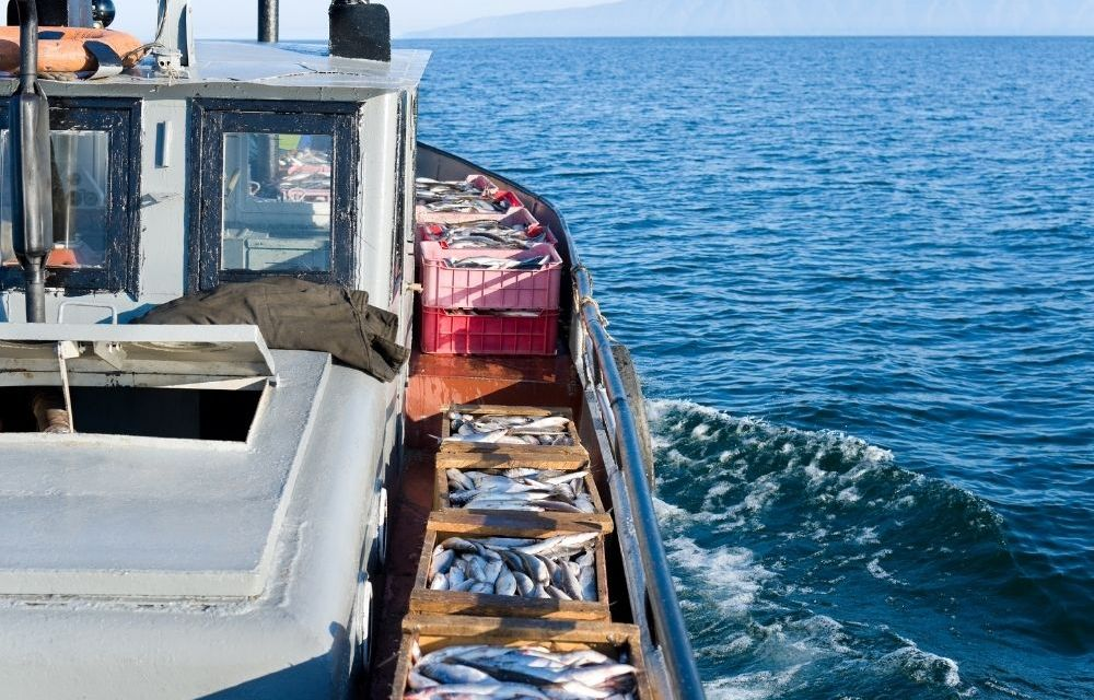 UK and Greenland strengthen cooperation on fisheries