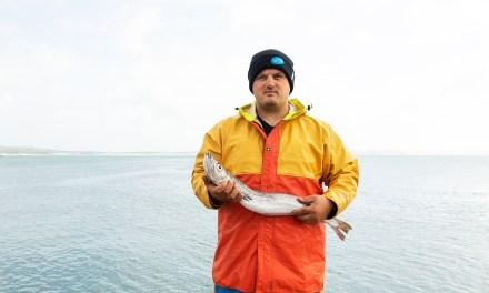 Cornish fishermen celebrate rising demand as hake is recertified as sustainable
