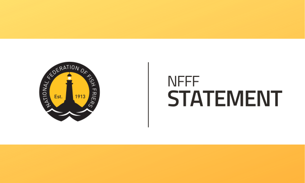 NFFF STATEMENT: NEW ADVERTISING RULES TO HELP TACKLE CHILDHOOD OBESITY