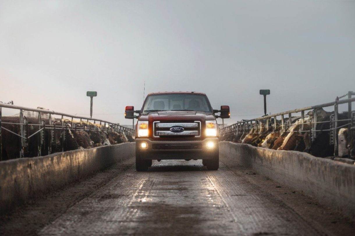 2015 King Ranch Super Duty