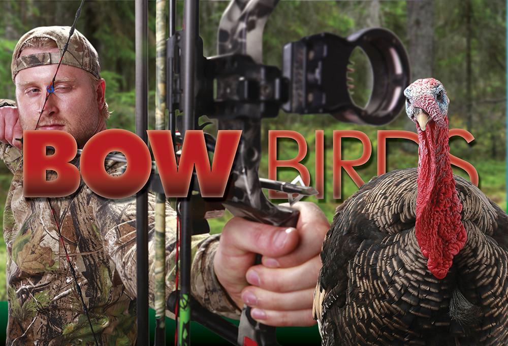 F6-Lead-bowbirds