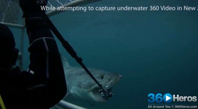 Great white shark attacks and destroys a camera rig