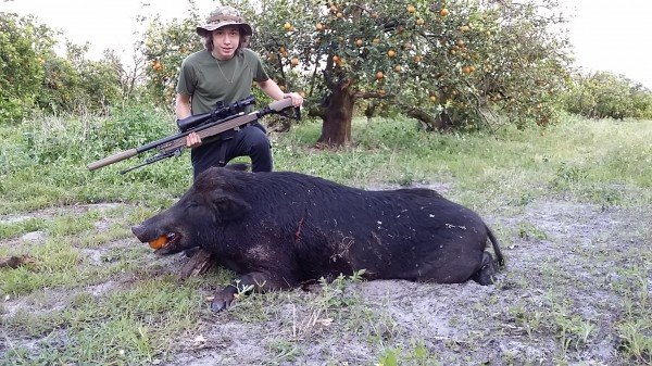 aac-hog-suppressor