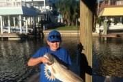 Big Redfish off the dock