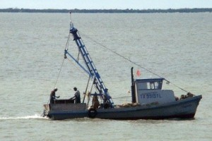 TF&G - OYSTERING CLOSED IN LAVACA BAY