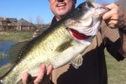 Big Pond Bass