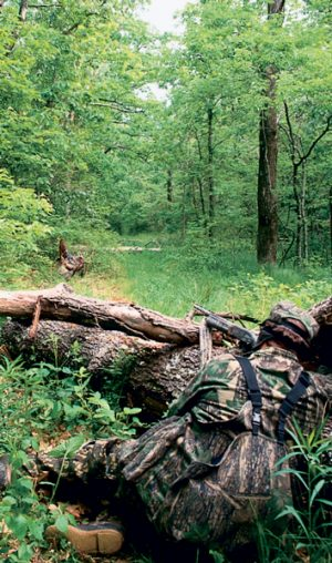 This hunter is taking aim at a strutting eastern turkey.