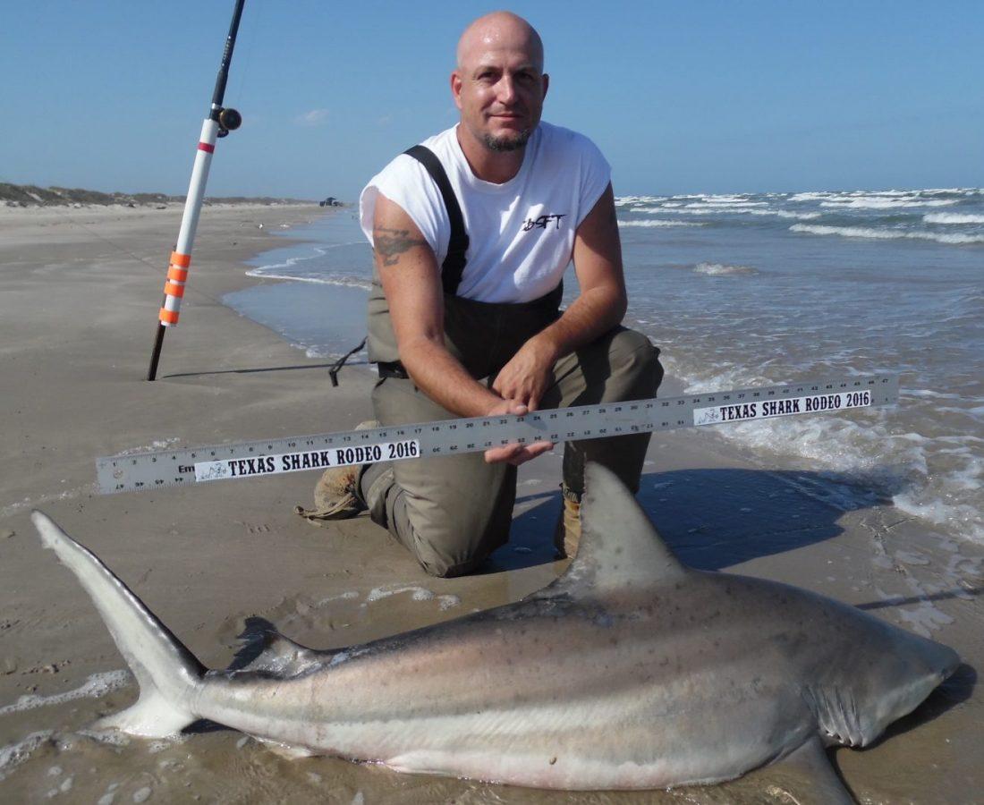 Blacktip shark at pins texas hotshots saltwater for Texas shark fishing
