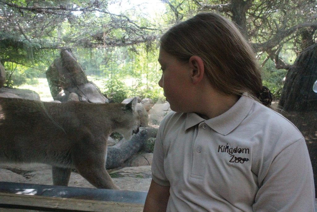 Lauren Williams gets a close look at a cougar at the Caldwell Zoo in Tyler. Even zoo trips can be a big inspiration for kids.
