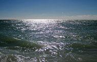 Galveston Area Anglers Survive at Sea