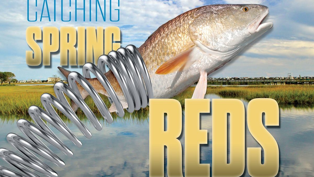 Catching Spring Redfish
