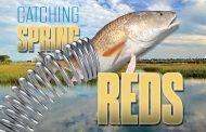 Catching Spring Reds