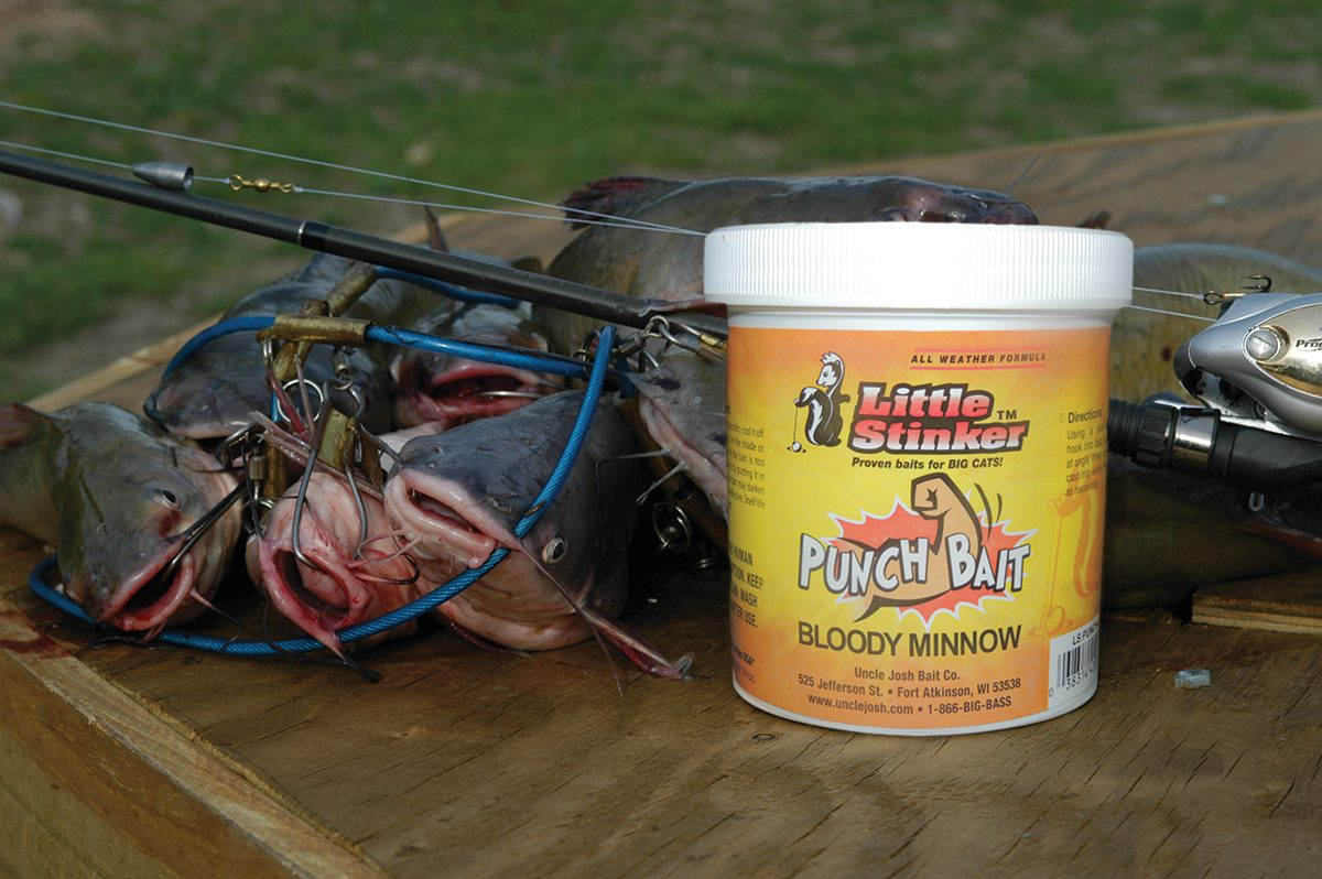 Catfish with a punch pro tips for going after summer catfish for Cat fish bait