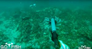 Underwater Suppressed Glock