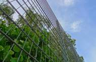 The Texas High Fence Controversy: Both Sides of the Fence