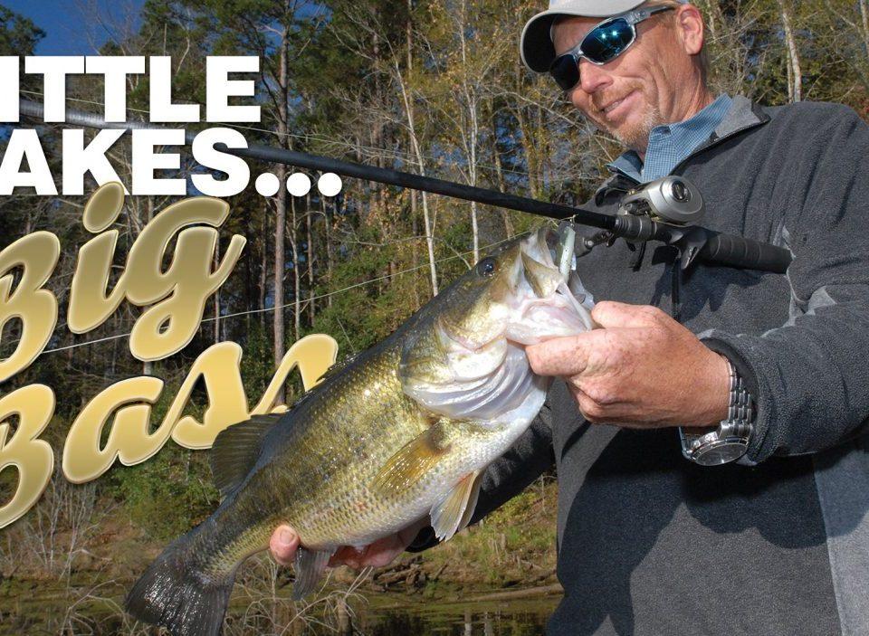 Little Lakes, big bass
