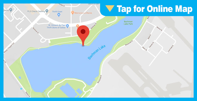 Bachman Lake HOTSPOT: Main Lake or Bridge Area