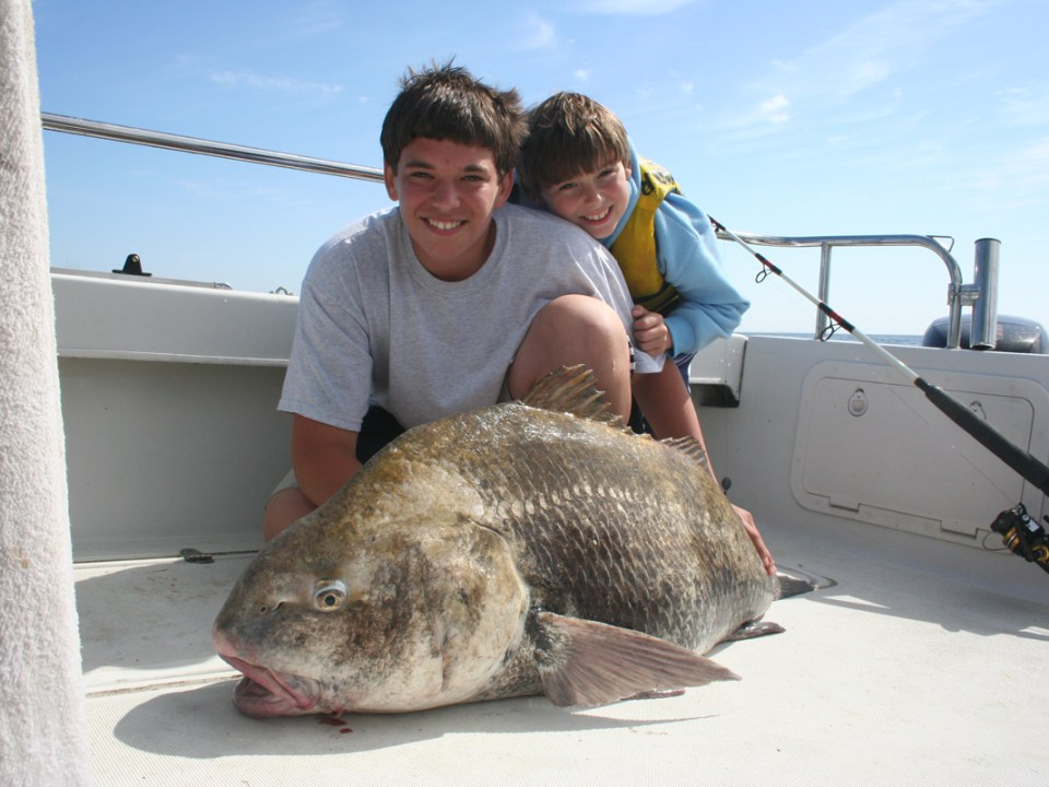 giant black drum