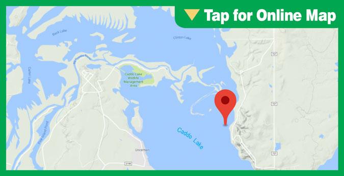 Caddo Lake HOTSPOT: Alligator Bayou