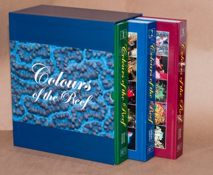 Colours of the Reef Box